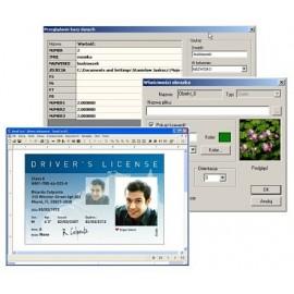 program Semicard Graphic